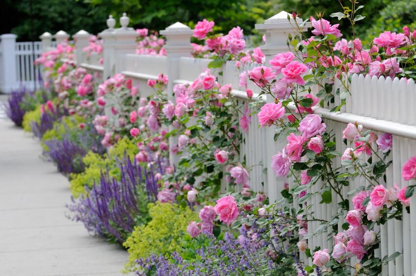 Fabulous Beautiful Garden Landscape Natural Landscaping  Ideas Pond With Birdhouse 1000 Ideas About